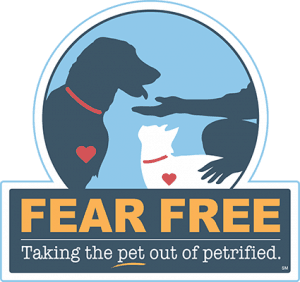 Fear Free Veterinarian
